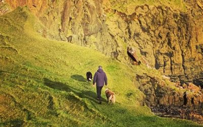 The Top 5 Walking Routes on Skye